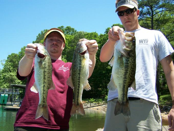 Lake Allatoona Swimbaits
