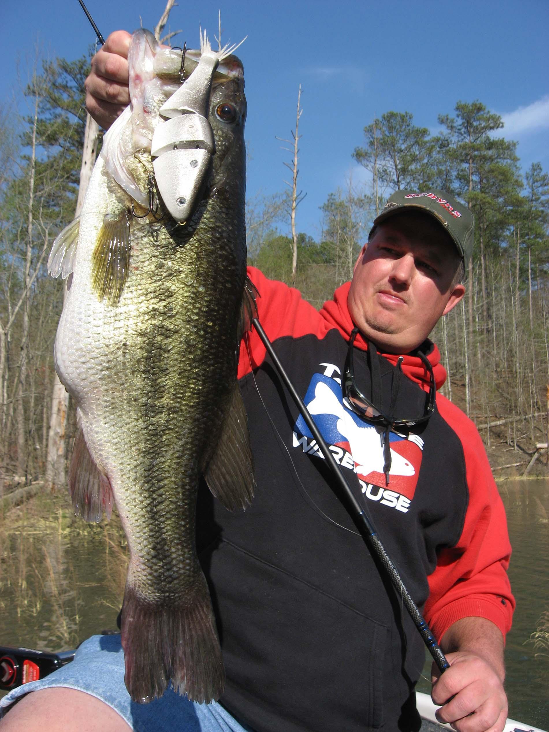Lake Allatoona Largemouth Bass Fishing