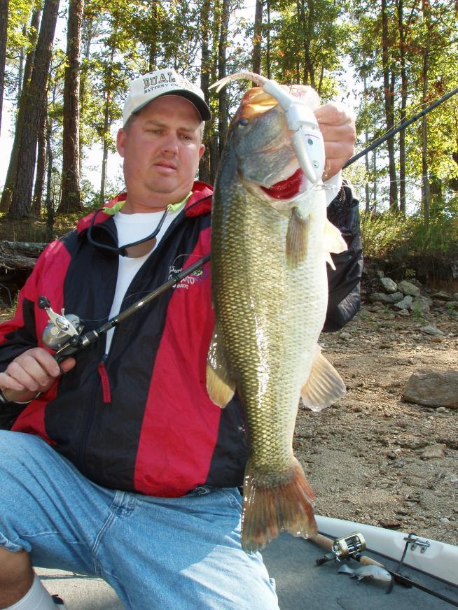 Allatoona Swimbait Fishing