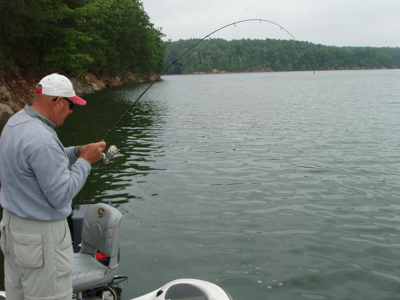lake allatoona fishing guide service atlanta bass fishing